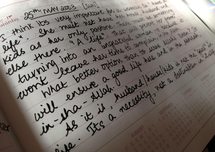 diary snapshot
